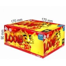 Loong kompakt 100ran